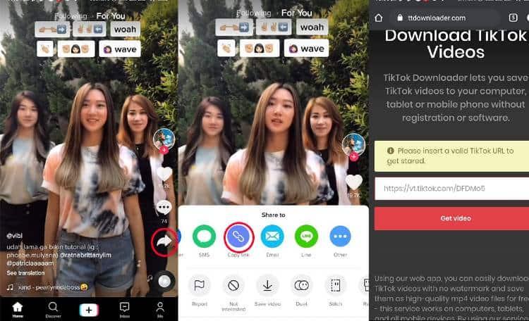 Download Video TikTok melalui Link